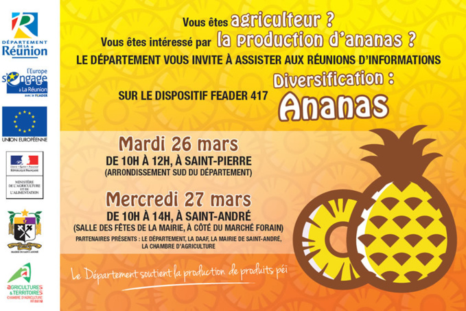 Réunions d'informations sur le dispositif FEADER 417 diversification : Ananas