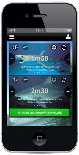 Wave Réunion: Une application smartphone anti-requin