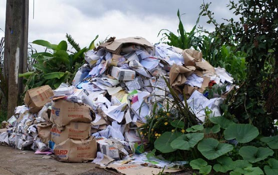 Comment des documents voués à la destruction ont pu finir en pleine nature ? (photos : bandcochon.re)