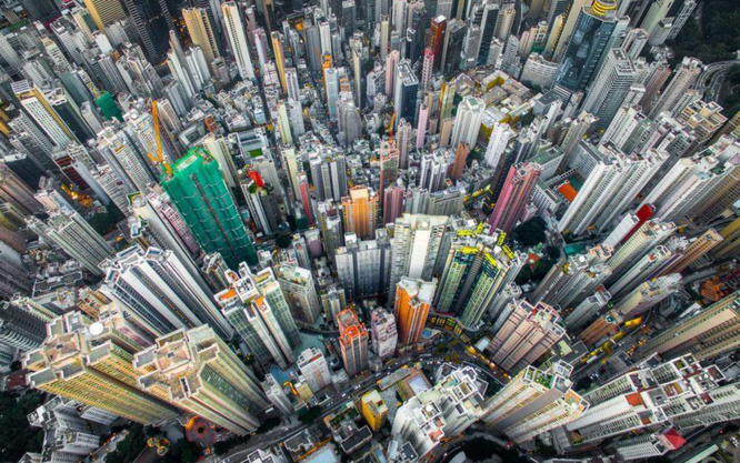 Jungle urbaine de Andy Yeung, Hong Kong (@NationalGeographic)