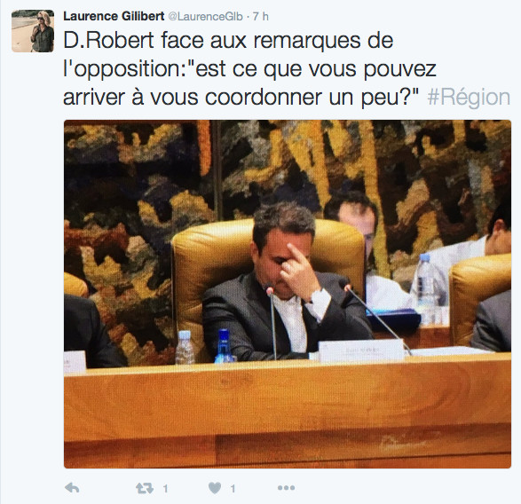 "Thierry Robert à Didier Robert : ""On vous attribue le bonnet d'âne"""