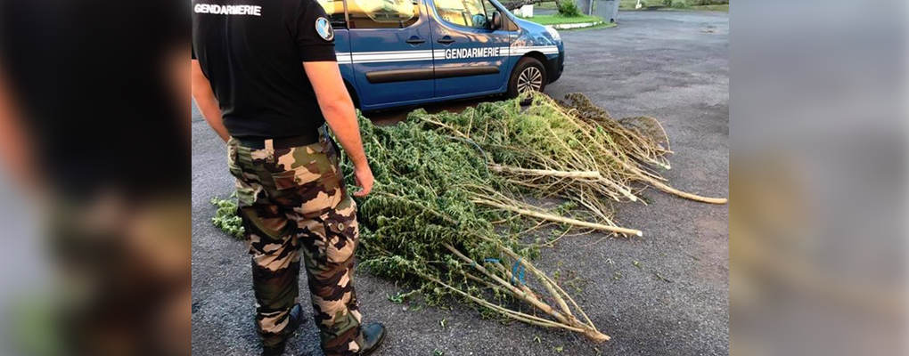 Photo : Facebook Gendarmerie de La Réunion
