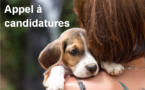 Appel à candidatures à l'attention des associations de protection animale